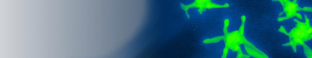Banner für INM-Startseite_1.1