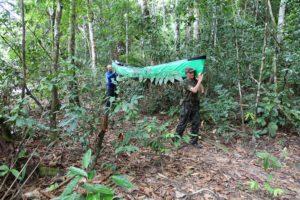 Kanu schleppen durch den Dschungel