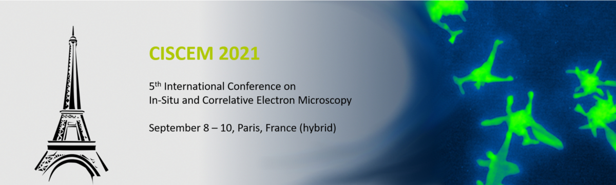 CISCEM 2021 - Hybrid Conference on In-Situ and Correlative Electron Microscopy 5