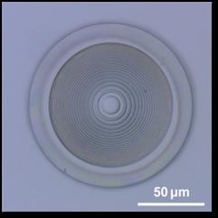 Optical Materials 44